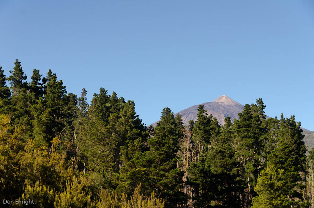 Our destination, as seen from the rich forests in the low country of Tenerife.