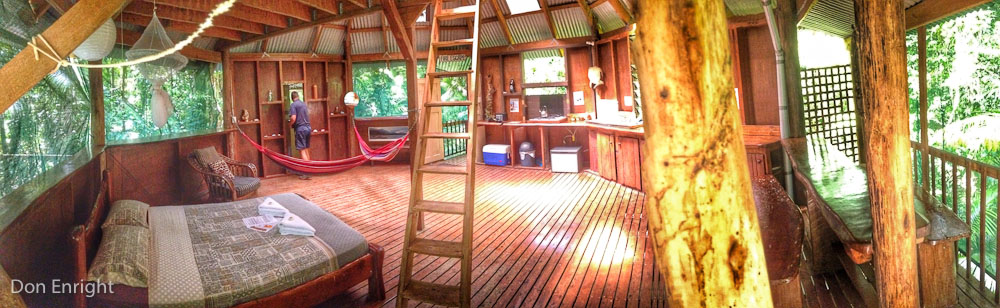 Daintree treehouse