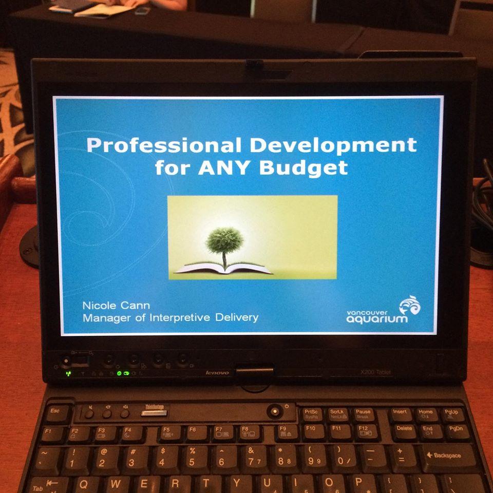 Professional development at any budget.