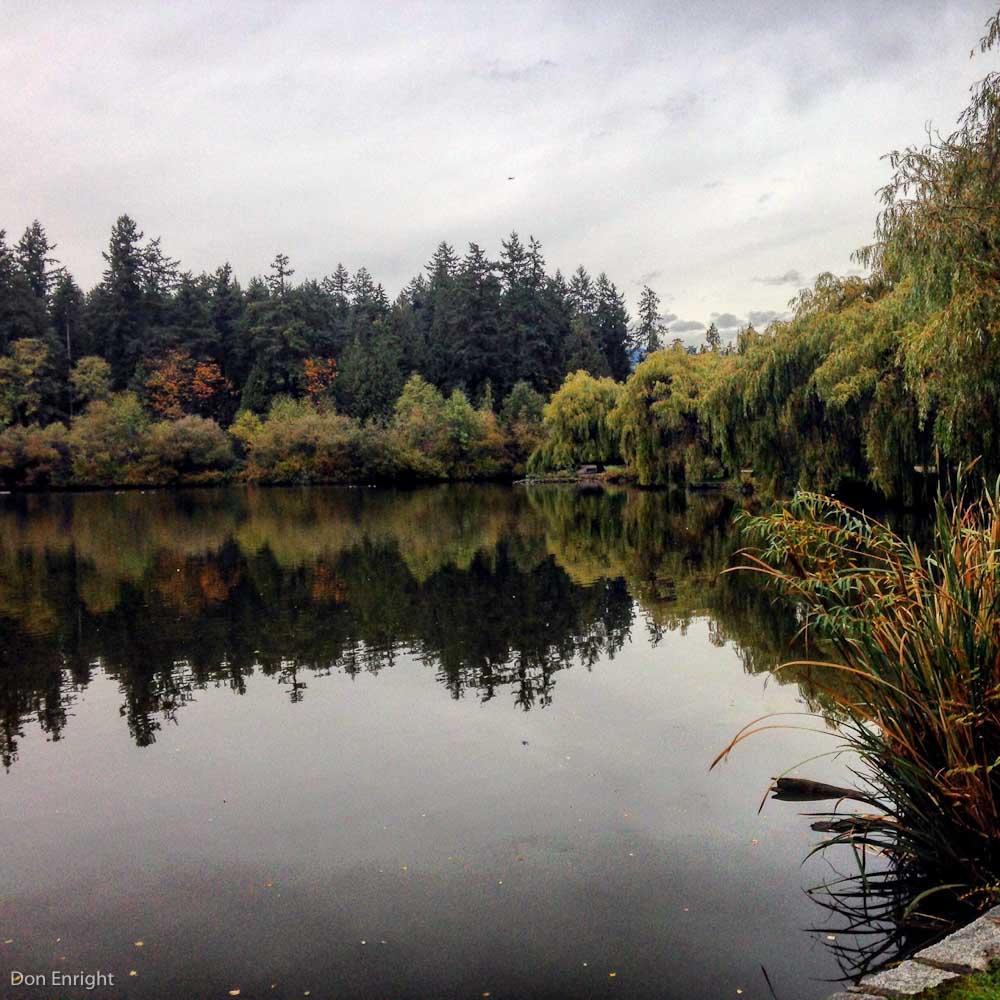 Autumn in Stanley Park