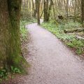 Path to Surrey Nature Centre